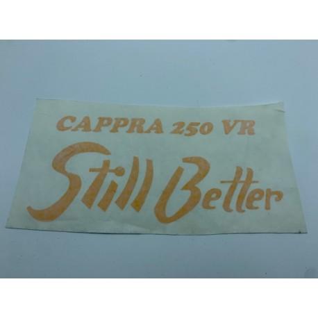 Adh. Cappra Still Better amarillo