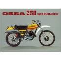SUPER PIONEER 250