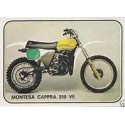 CAPPRA 250 VE